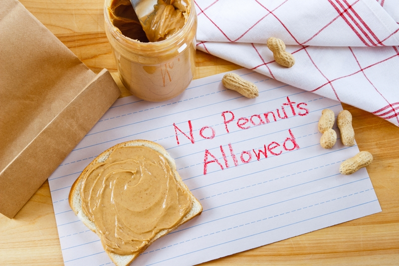 Food allergies are a high concern in the early childhood education classroom.